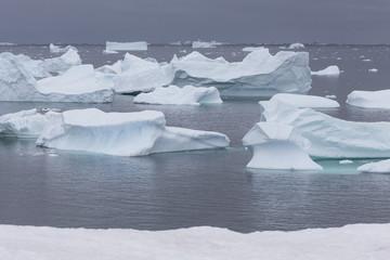 Eisberge vor Petermann Island