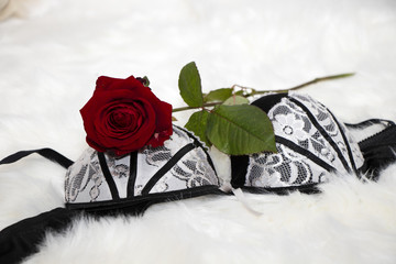 sexy black white lingerie with a red rose on a white fur - valentines day - surprise verführung