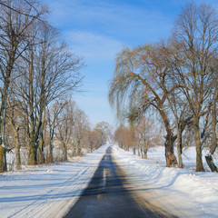 Winter road through snowy fields and trees .