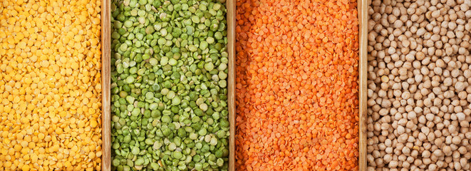 Family of beans panorama. Yellow lentils, peas are green chipped, red lentils, chickpeas.