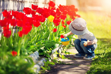 Little child walking near tulips on the flower bed in beautiful spring day