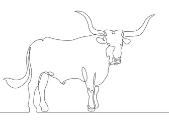 continuous line drawing bull cow