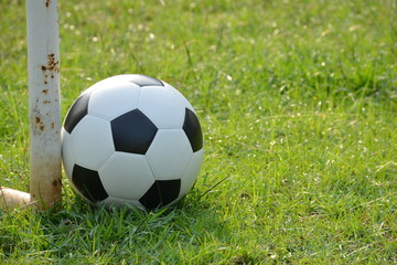 Football or soccer ball on the lawn with morning sunlight, outdoor activities.