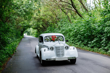 Passion wedding bouquet with dark red and marsala roses, greenery standing on white car. Bridal flowers, decorated with ribbon.
