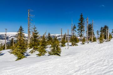 Krkonose (Giant Mountains) In Winter - Czechia