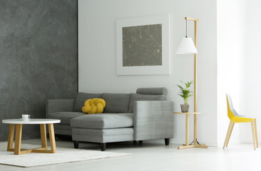 Grey flat interior with plant
