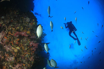 Scuba divers swim over coral reef