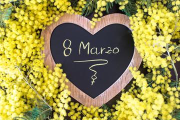La mimosa è il fiore simbolo dell'8 marzo: giornata internazionale della donna, o festa della donna.