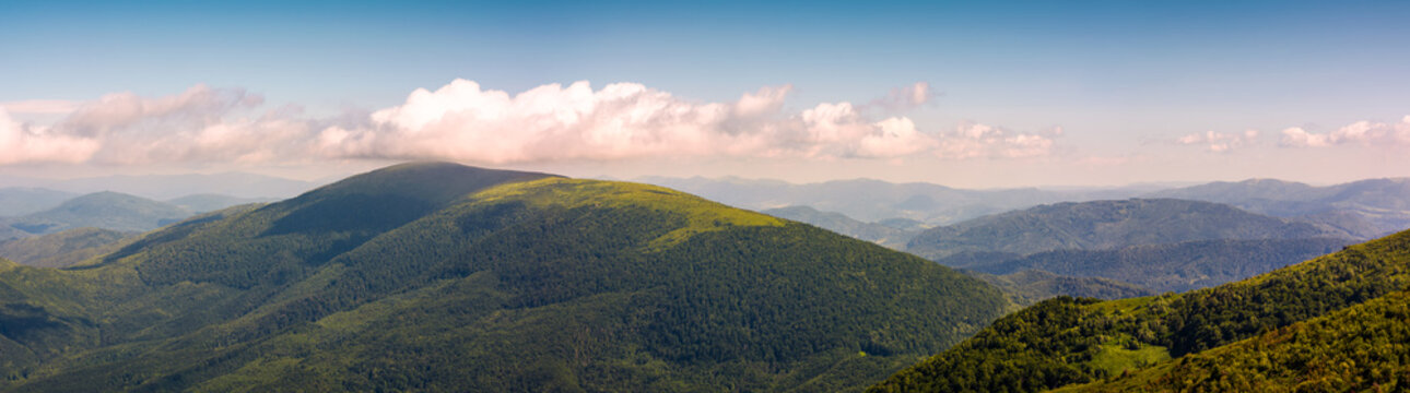 panorama of beautiful Carpathian mountains. lovely forenoon summer landscape viewed from top of a hill.