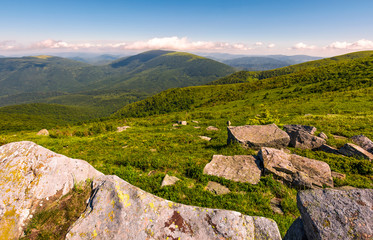 Carpathian alps with huge boulders on hillsides. beautiful summer landscape in fine weather. Location Polonina Runa, Ukraine