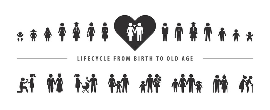 Life cycle and aging process. Vector icon set, person growing up from baby to old age.