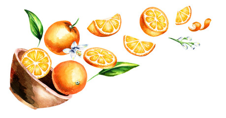 Bowl with oranges. Hand drawn horizontal watercolor illustration, isolated on white background