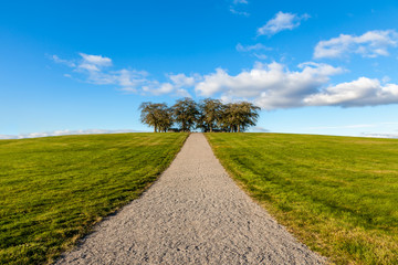 Peaceful and beautiful landscape view of a gravel walkway up a grassy hill with a group of trees against blue cloudy sky.