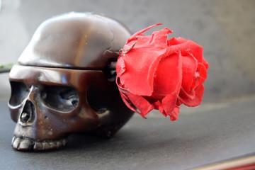 Calavera con rosa.. La vida y la muerte