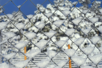Background Chain Link and Snow