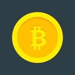 Bitcoin Mining   Cryptomon Vector Isolated Icon Sign Set Illustration Material Design