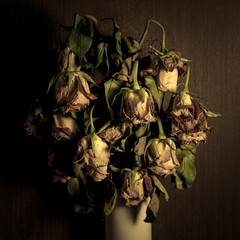 wilted roses over dark wallpaper