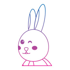 rabbit or bunny wink icon image vector illustration design  blue to purple line