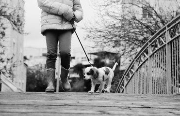 7 year old girl is walking with a puppy in the park
