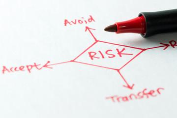 Risk management diagram Wall mural