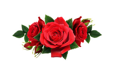Red rose flowers in a line arrangement