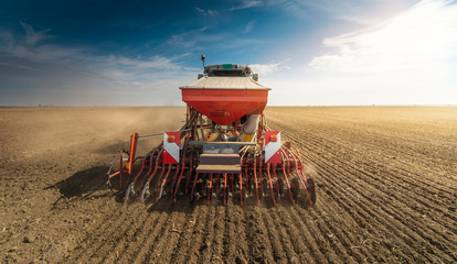 Fototapeta Farmer with tractor seeding - sowing crops at agricultural fields obraz