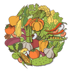 poster with vegetables