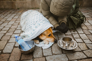 Social theme. A beggar beggar begging with a dog wrapped in a blanket to ask for help in the city of Prague is winter cold. Empty post and bottle with place for text