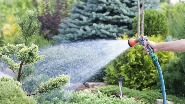 Hand garden hose with water spray, watering flowers, close-up, water splashes, landscape design, alpine slide