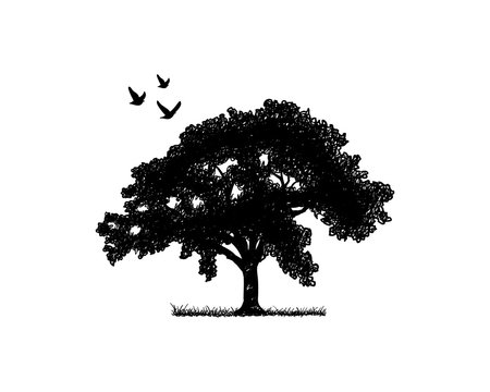 Black Oak Tree with Flying Birds Illustration Silhouette Logo Symbol Vector