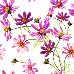 Seamless background pattern of flowers of cosmos.