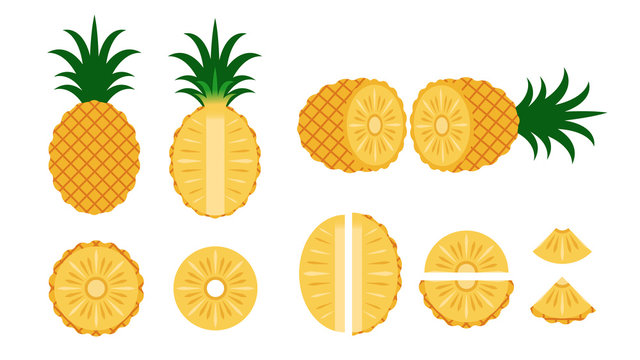 Set of pineapple isolated on white background - Vector illustration
