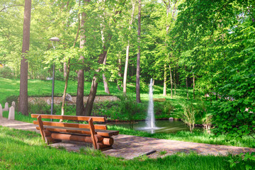 Bench in a sunny park