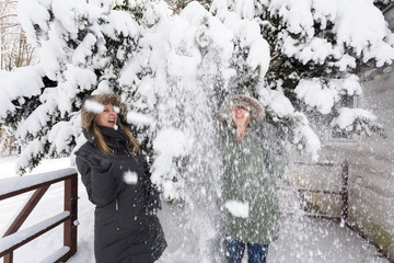 A Young Man Shakes Snow Off Some Branches Onto Two Unsuspecting Female Friends