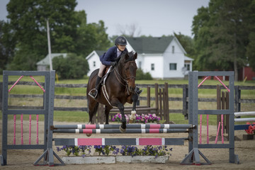 Rider and gelding over pink and grey oxer
