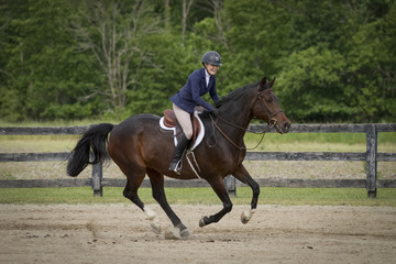 Rider laughs while galloping bay horse