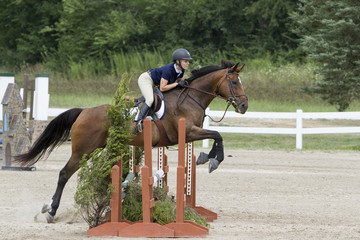 Side view of a woman and bay jumping a triple oxer