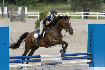 Woman and bay gelding over a vertical brick wall