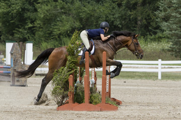 Jumper Rider over and Triple Oxer