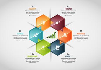 6 Hexagonal Sections Infographic