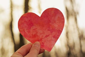 Fototapeta Czerwone serce, tło obraz