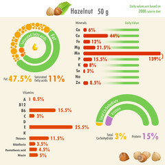 Infographic of hazelnut nutritional value / Infographic illustration of hazelnut nutritional value with values of fat, protein, carbohydrate, minerals and vitamins