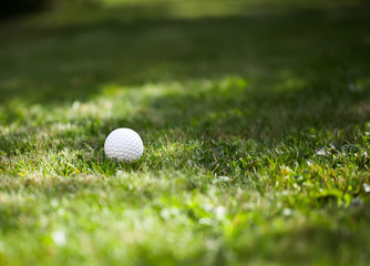 golf ball on sports golf course close-up, on blurred background