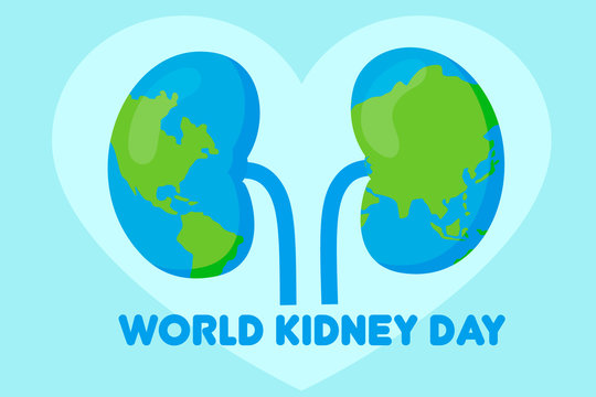 world kidney day concept