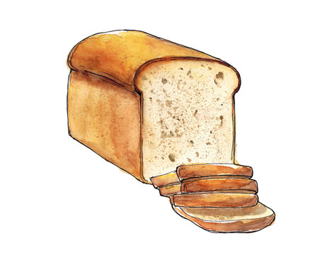 Watercolor hand drawn sketch illustration of bread with slices isolated on white