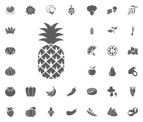 Pineapple, ananas icon. Fruit and Vegetables vector illustration icon set. food and plant symbols.
