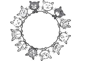 cats border