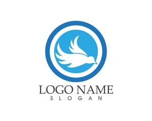 Blue bird logo design template