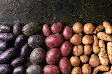 Variety of raw uncooked organic potatoes different kind and colors red, yellow, purple in row over dark texture background. Top view, space