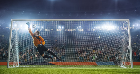 Soccer goalkeeper in action on the stadium Wall mural